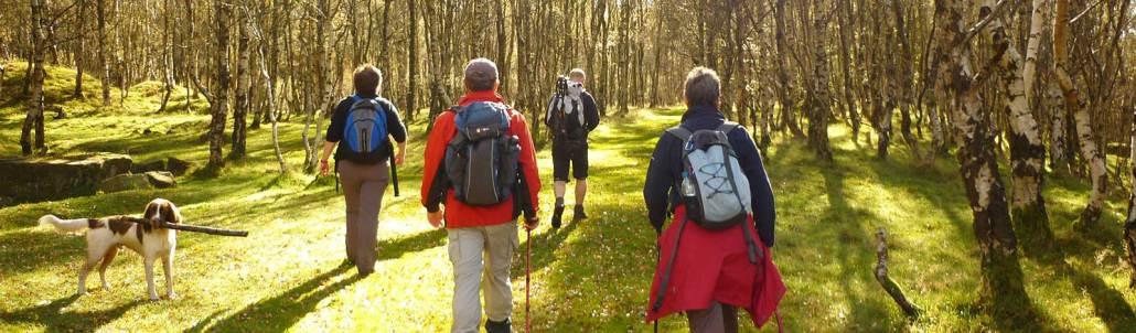 guided walking weekends
