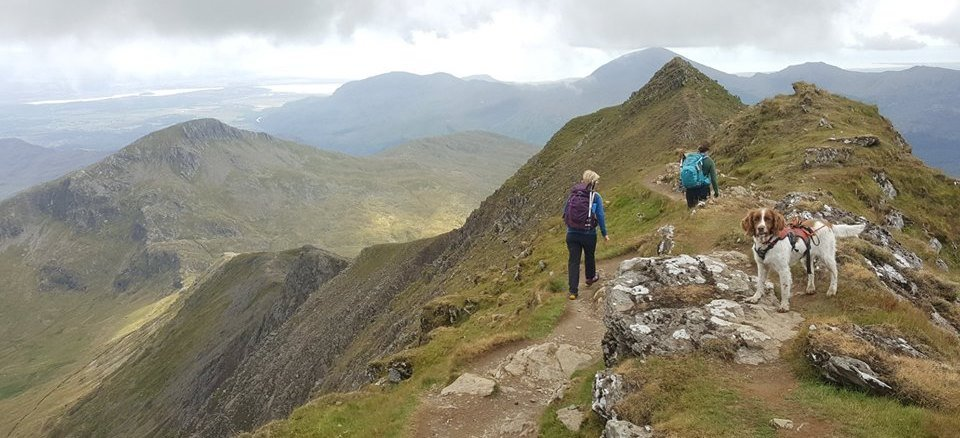 image showing two walkers traversing the South Ridge off Snowdon