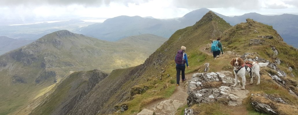 image showing two walkers on a guided walk descending from Snowdon